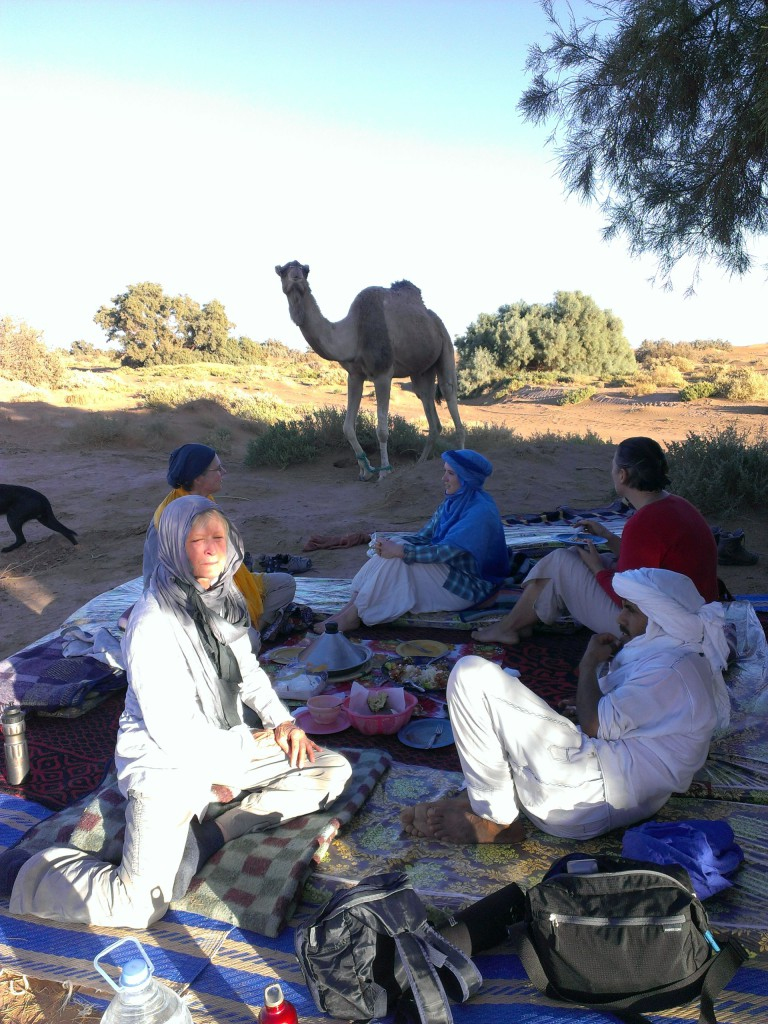 neugieriges Dromedar nähert sich einer Gruppe Frauen, die entspannt beim Essen sitzen